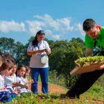 Estação Agricultura - Instituto Casológica