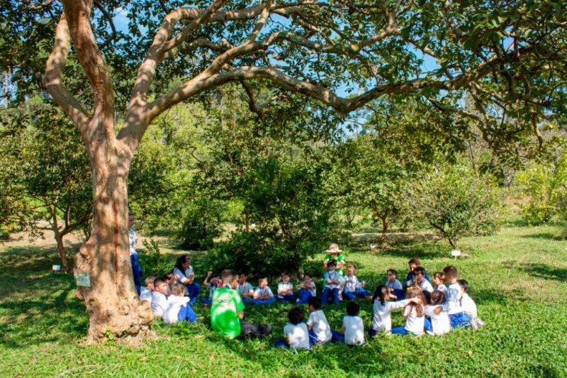 Estação Botânica com as crianças - Instituto Casológica