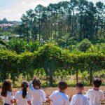 Crianças felizes no Instituto Casológica