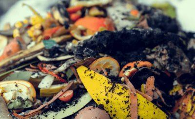 Lixo Orgânico na compostagem doméstica