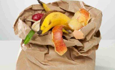 Lixo Orgânico para Compostagem sem minhocas