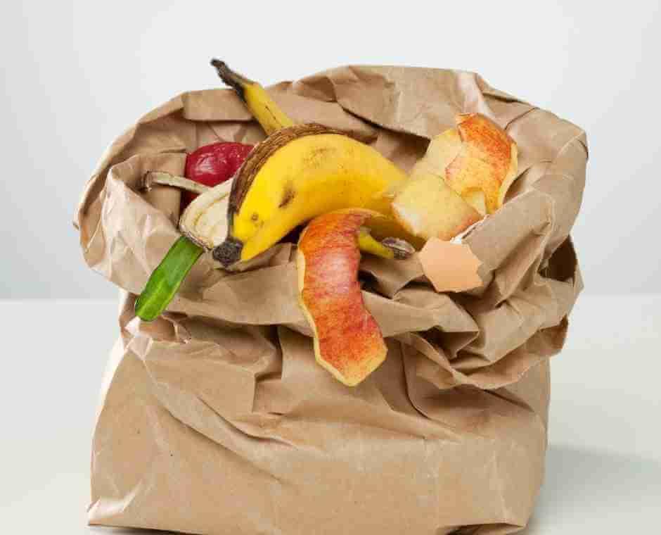 Lixo Orgânico em uma sacola de papel